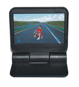 Boyo VTM4300S 4.3-Inch Digital TFT LCD Monitor with Sunsh...