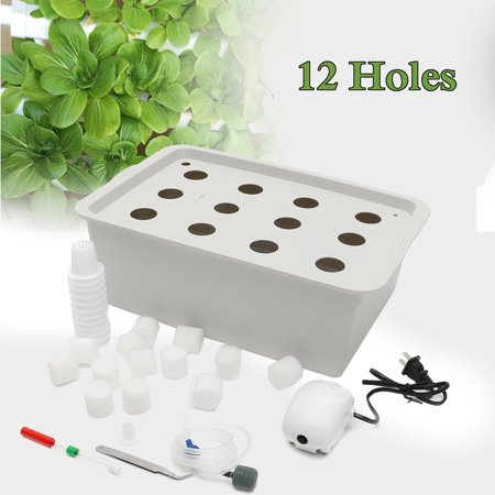 12 Holes Plant Site Hydroponic System Grow Kit Bubble Indoor Cabinet Box (Best Indoor Grow Systems)