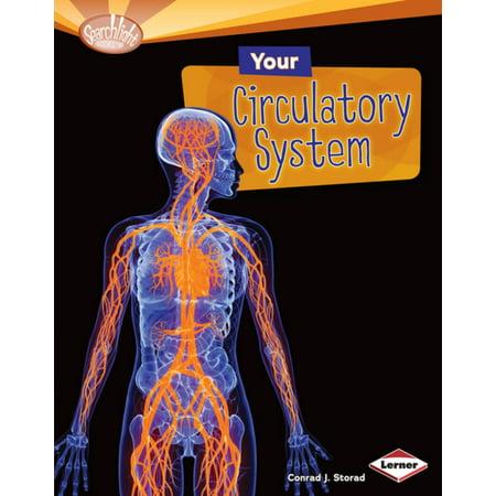 Your Circulatory System - eBook