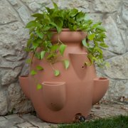 Terra Cotta Tuscana Strawberry Pot Rain Barrel