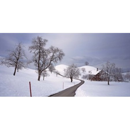 Switzerland Canton of Zug Linden trees on a snow covered landscape Poster (Switzerland Cover)