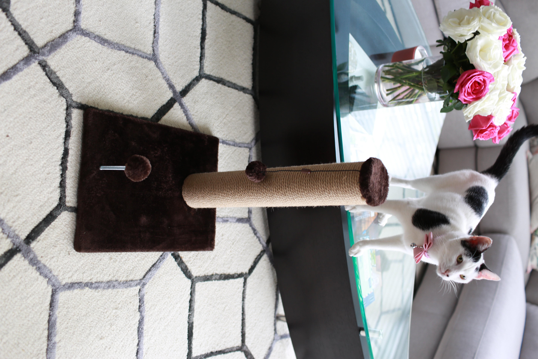 18 inch Jute Scratching Post (Dark Chocolate Fur 12x16 Base) by One Source International LLC