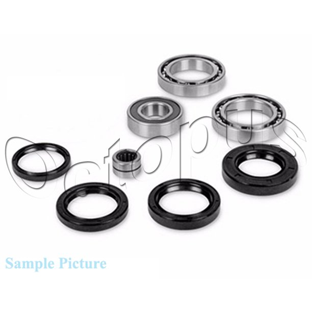 Arctic Cat 300 4x4 ATV Bearing & Seal Kit for Front