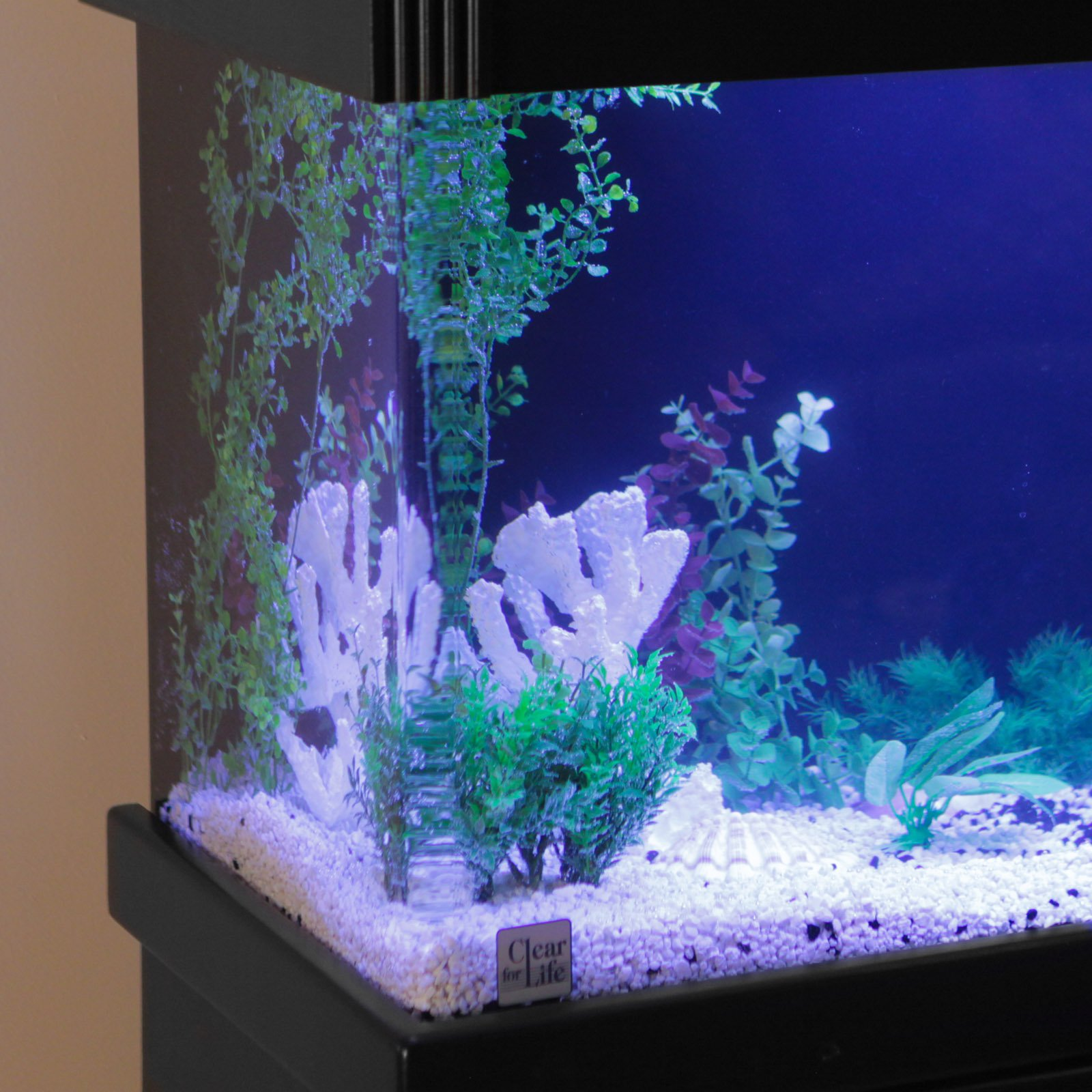 Aquarium fish tank sale uk - Aquarium Fish Tank Sale Uk