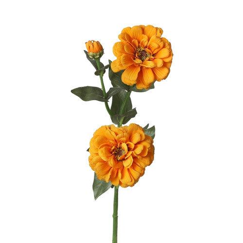 Teters Floral Zinnia Stemx 2 W/ Bud