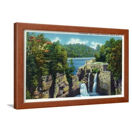 Ithaca, New York - View of Trihammer Falls, Cornell University Framed Print Wall Art By Lantern