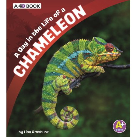 A Day in the Life of a Chameleon : A 4D Book (A Day In The Life Of A Tree)