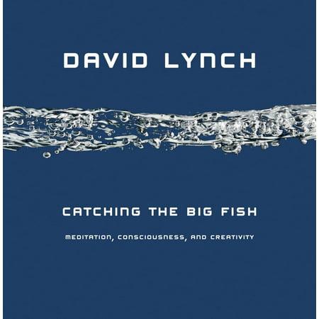 Catching the Big Fish : Meditation, Consciousness, and Creativity - Bug Eyed Fish