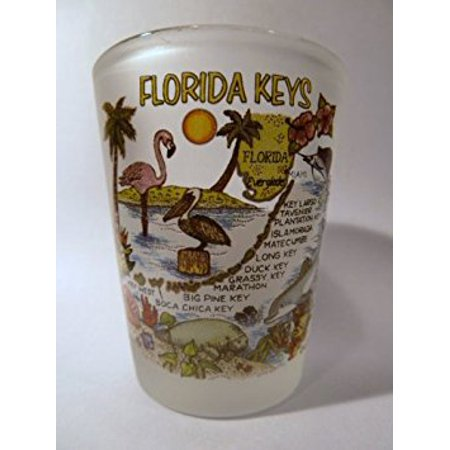 Florida Keys Map Frosted Shot Glass