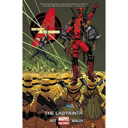 Secret Avengers Volume 2 : The Labyrinth for $<!---->