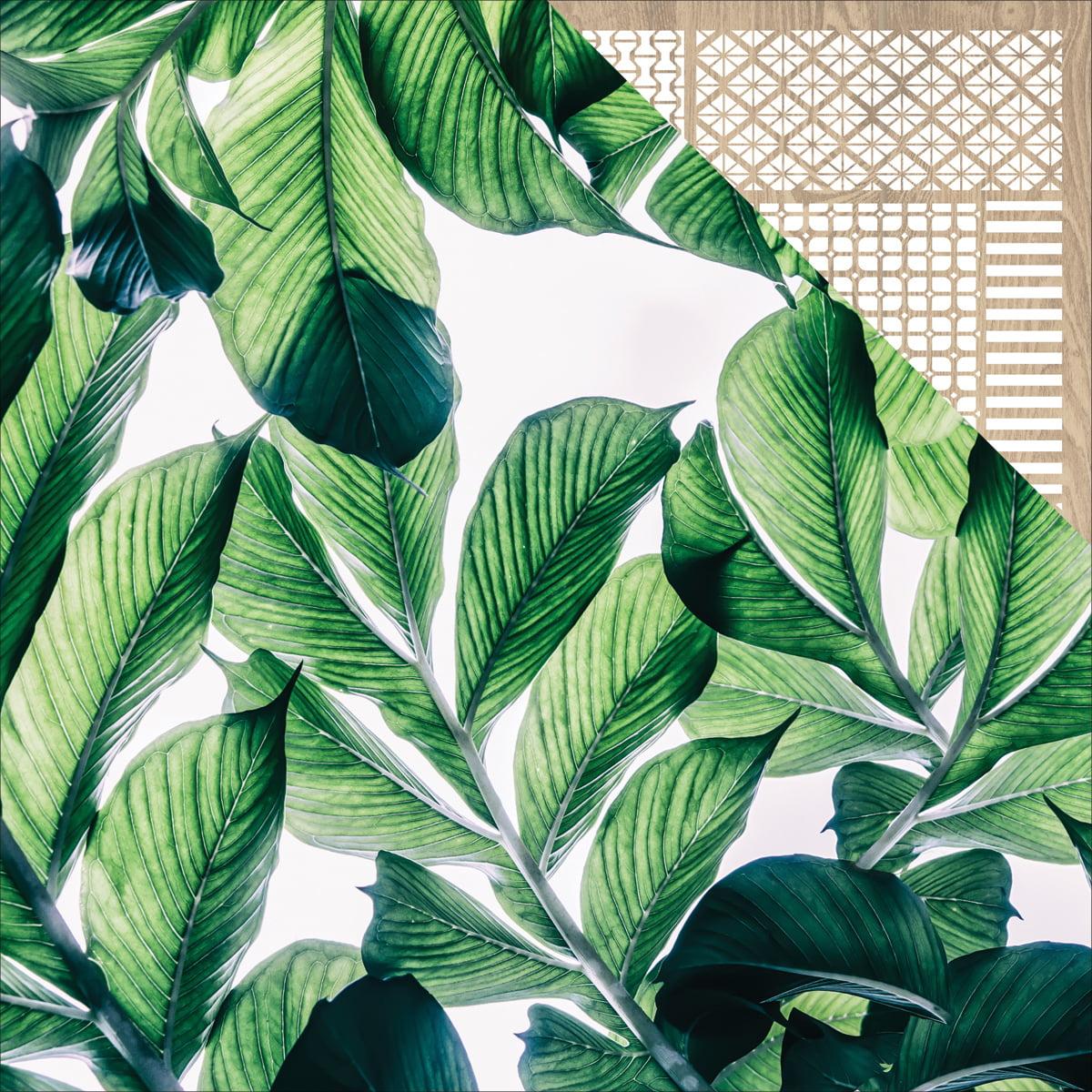 "Havana Nights Double-Sided Cardstock 12""X12""-Lush - image 1 of 1"