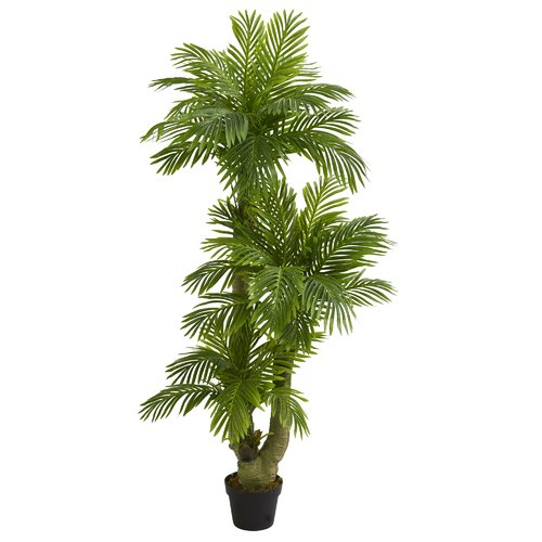 Bay Isle Home Triple Phoenix Floor Palm Tree In Planter Walmart Com