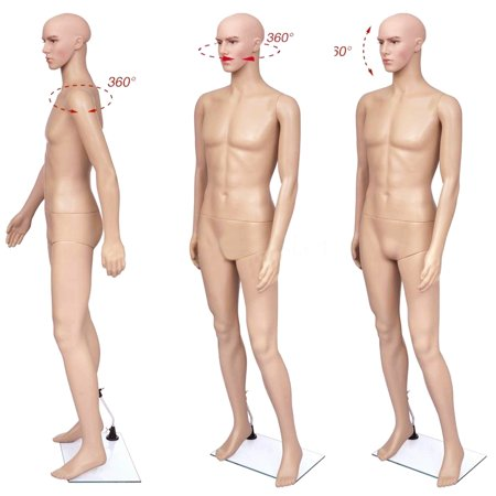 Ktaxon Male Body Model Plastic Mannequin Full Body Dress Form Shopwindow Display