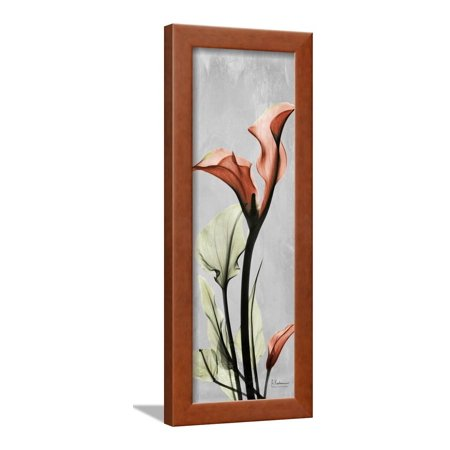 Calla Lily Garden Art - Gray Calla Lily 1 Framed Print Wall Art By Albert Koetsier