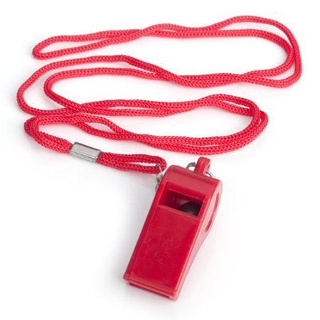 GOGO Bulk Whistle With Lanyard Sport Coach Whistle Safety Emergency Survival Whistle For Wholesale-Red Pea-1 - Bulk Lanyards