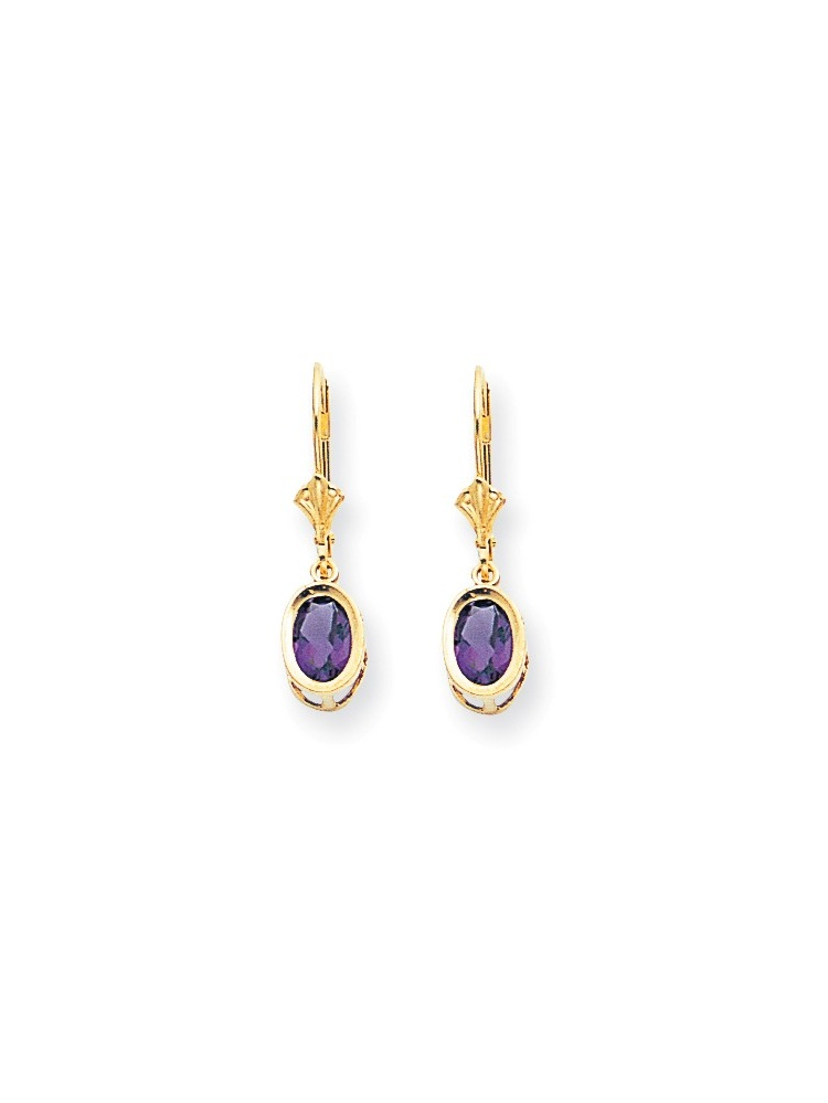 ICE CARATS ICE CARATS 14kt Yellow Gold 7x5mm Oval Purple Amethyst Leverback Earrings Lever Back Drop Dangle Gemstone... by IceCarats Designer Jewelry Gift USA