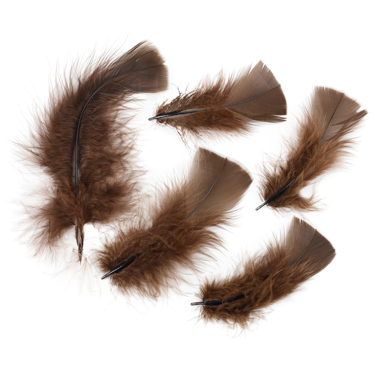 Turkey Plumage Feathers .5oz-Brown