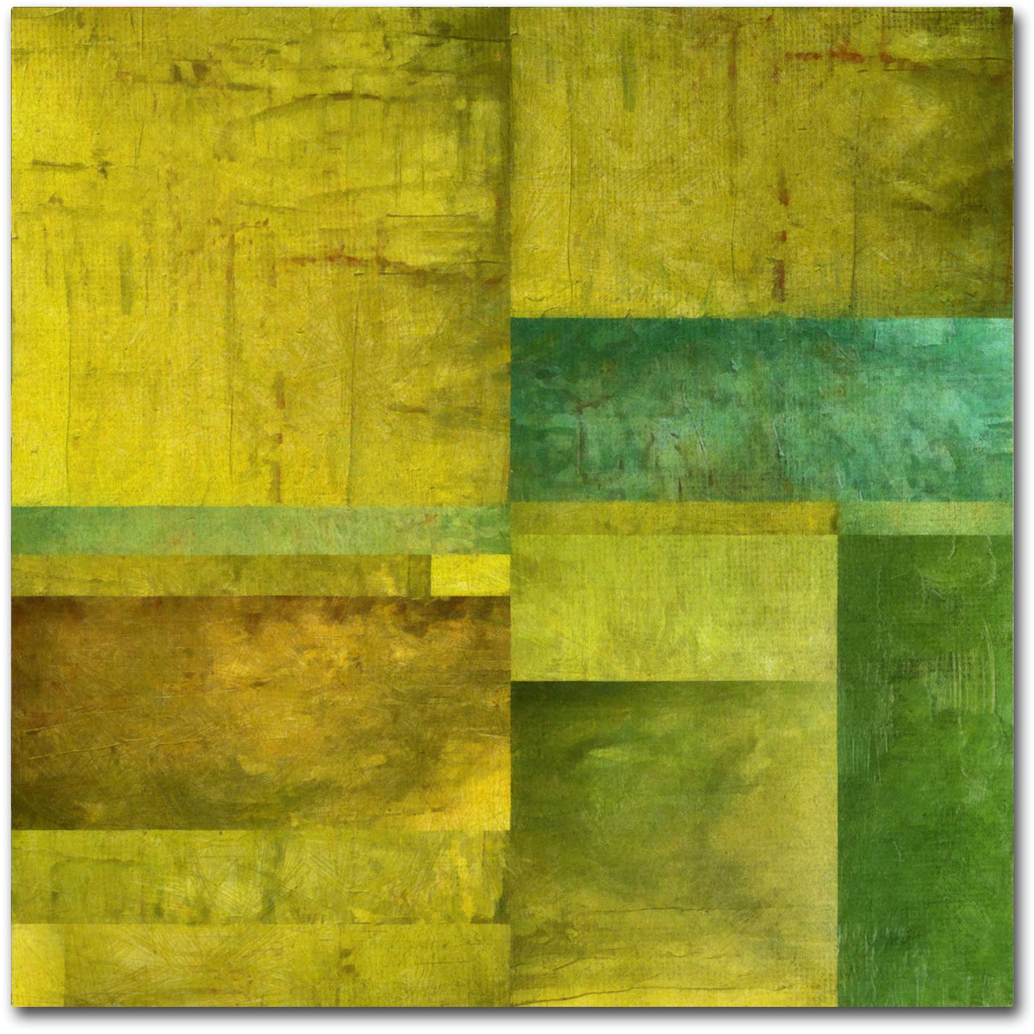 "Trademark Fine Art ""Essence of Green"" Canvas Art by Michelle Calkins"