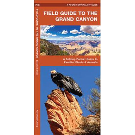 Field Guide To The Grand Canyon  A Folding Pocket Guide To Familiar Plants   Animals