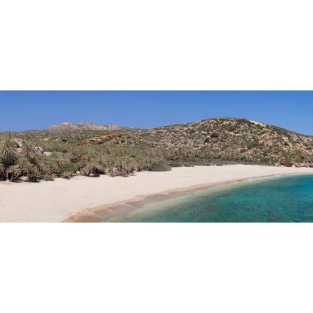 Beach and palm tree forest Vai Lasithi Eastern Crete Crete Greece Canvas Art - Panoramic Images (27 x 9)
