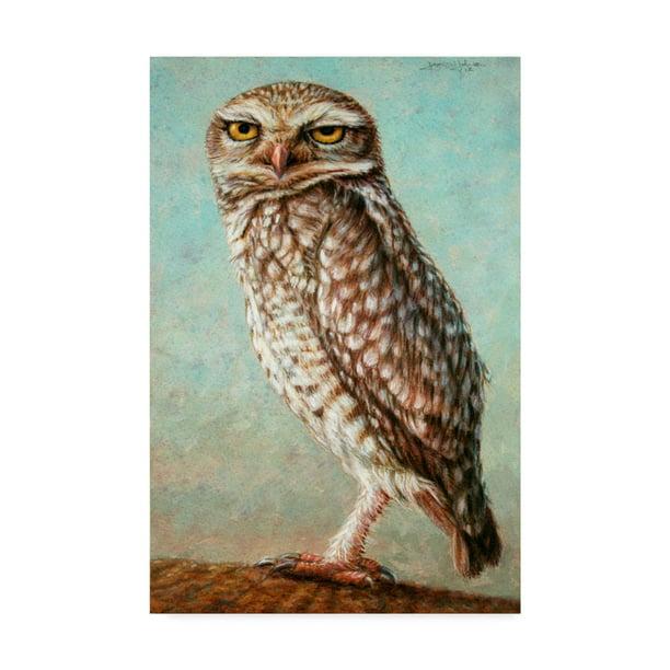 Trademark Fine Art Burrowing Owl Canvas Art By James W Johnson Walmart Com Walmart Com