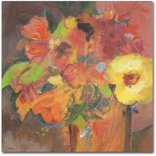 "Trademark Fine Art ""Floral Expressions"" Canvas Art by Sheila Golden"