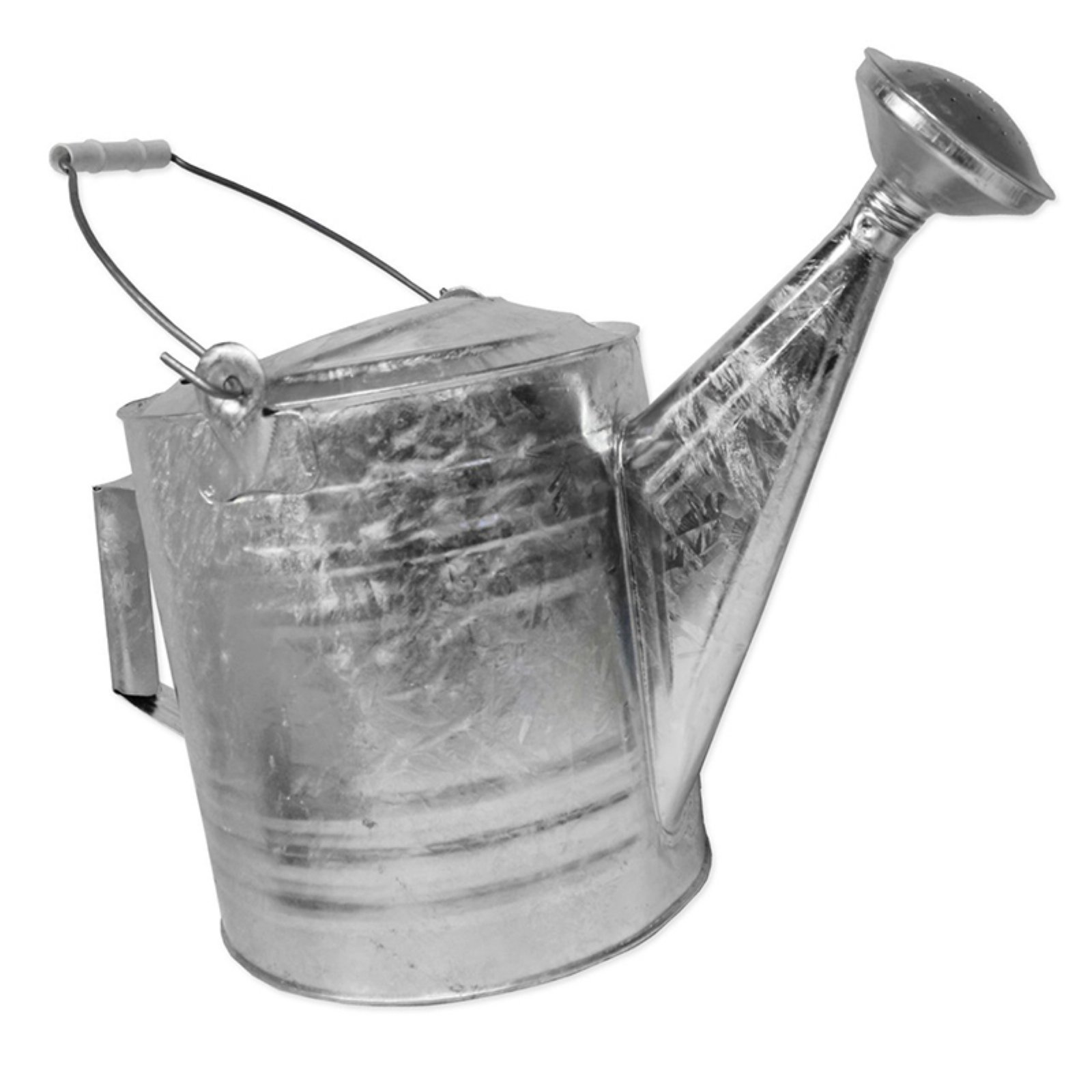 Behrens High Grade Steel 210 2.5 Gallon Hot Dipped Galvanized Steel Watering Can by Generic