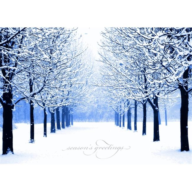 Birchcraft Studios 1158 Winter's Path - Silver Lined Envelope with White Lining - Blue Ink - Pack of 25