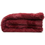 Chanasya Super Soft Cozy Sherpa Fuzzy Fur Warm Throw Blanket