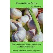 How to Grow Garlic - eBook