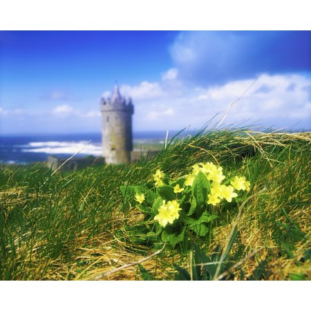 Floor 13 Halloween Seasons Tower (Primrose Flower In Foreground Doonagore Castle In The Distance Co Clare Ireland 16Th Century Tower House Overlooking The Atlantic Ocean Canvas Art - The Irish Image Collection  Design Pics)