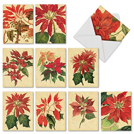 M10012XS POINSETTIA SEASON' 10 Assorted Merry Christmas Notecards Featuring Vintage Inspired Botanical Prints of Seasonal Poinsettias with Envelopes by The Best Card Company ()