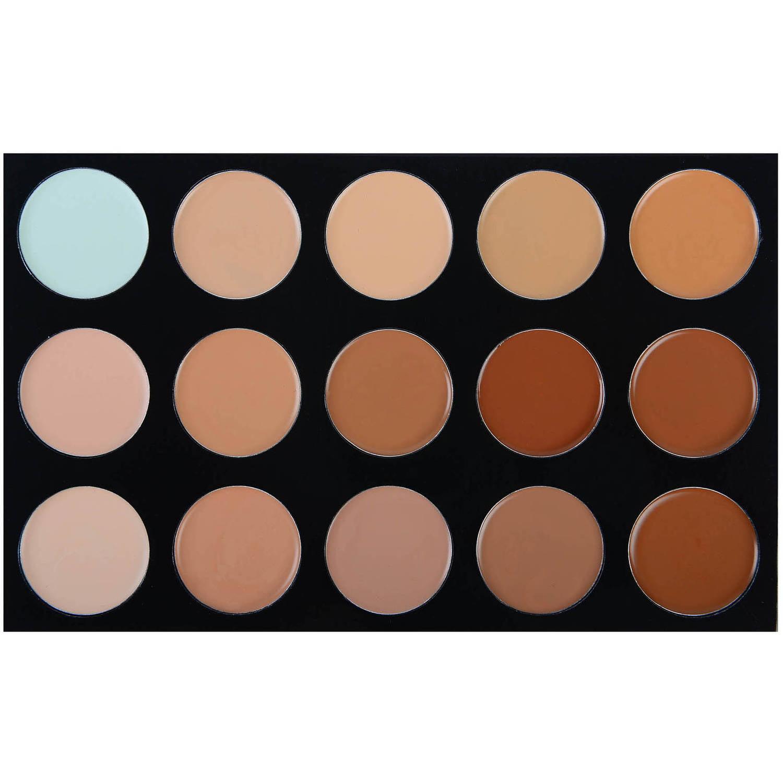 SHANY Masterpiece Foundation Concealer Camouflage Palette, 6.7 oz