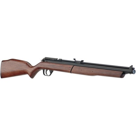 Benjamin .177 Cal Variable Pump Air Rifle 397
