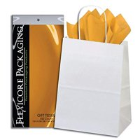 50ct White Paper Gift Bags + 100ct Azure Gift Tissue (Flexicore Packaging)