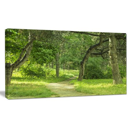 Design Art Green Forest Path In Early Summer Photographic Print On Wrapped Canvas