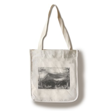 100 Total Bags - Catskill Mountains, New York - View of Two Lakes and the Mountain House (100% Cotton Tote Bag - Reusable)