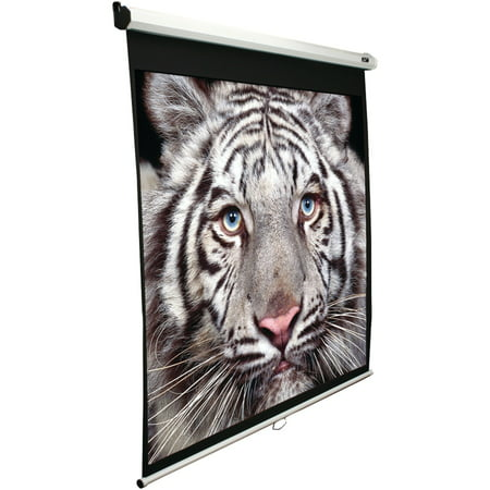 """Elite Screens M100v 100"""" Manual Pull-down B Series Projection Screen (4:3 Format; 60"""" X 80"""")"""