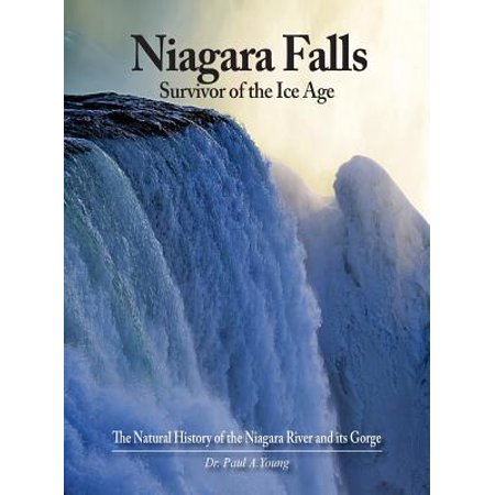 Niagara Falls : Survivor of the Ice Age: The Natural History of the Niagara River and Its (Ici Natural)