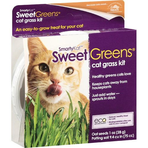 Smartykat: Sweetgreens Cat Grass Kit, 1 Oz