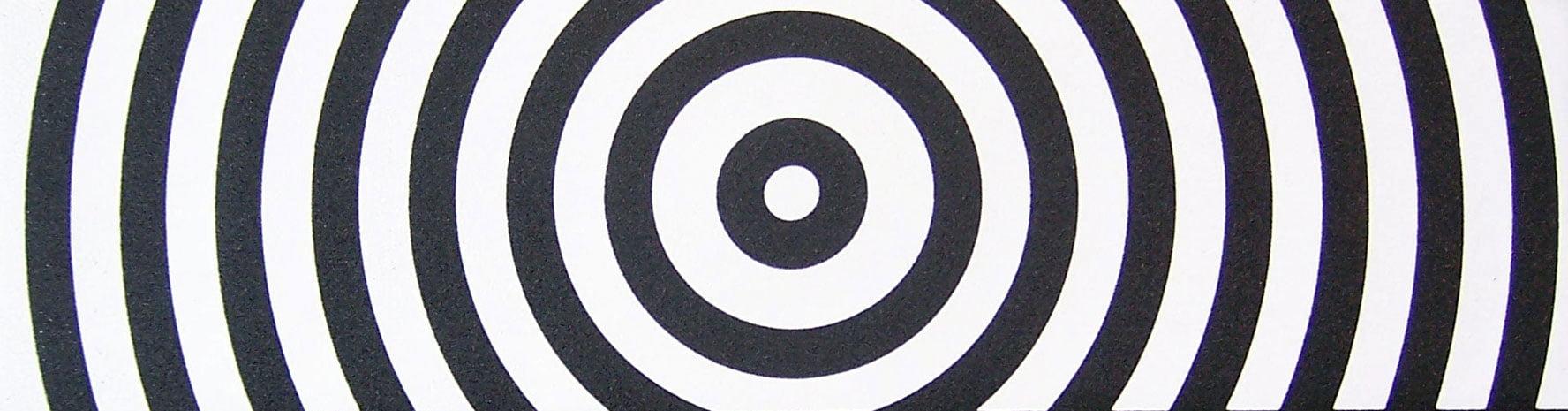 9x33in SKATEBOARD GRIPTAPE Target Professional Grip Tape by Black Diamond by