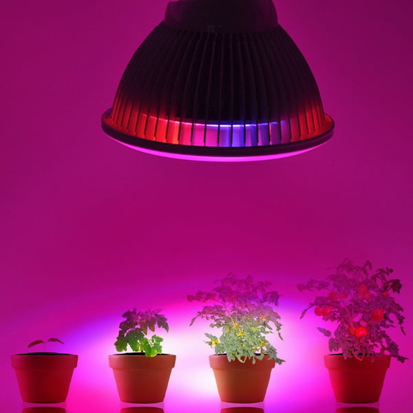 24W LED E27 Plant Growing Lamps Light Suit For Greenhouse Garden by