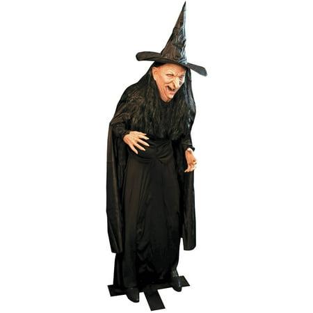 Witch Legend Halloween Decoration
