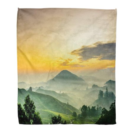 KDAGR Throw Blanket Warm Cozy Print Flannel Cameron Highlands Malaysia Sunrise at Green Tea Farm Mountain Dramatic Moving Comfortable Soft for Bed Sofa and Couch 58x80 Inches (Highland Throw)