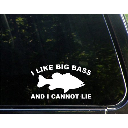 I Like Big Bass And I Cannot Lie - 7