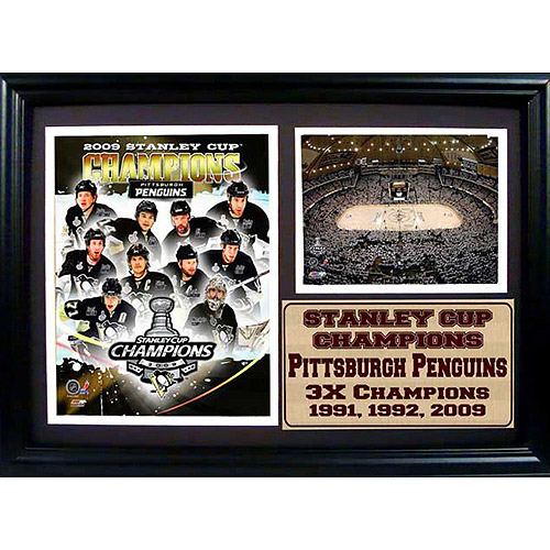 NHL Pittsburgh Penguins Photo Stat Frame, 12x18