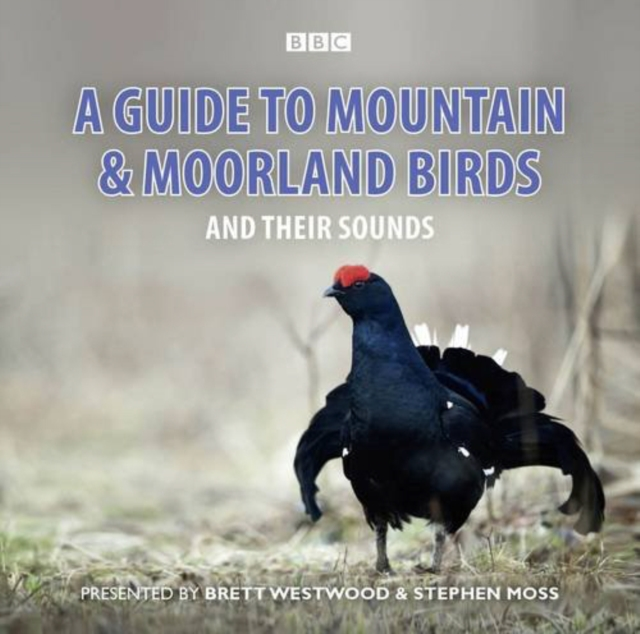 A Guide To Mountain And Moorland Birds And Their Sounds