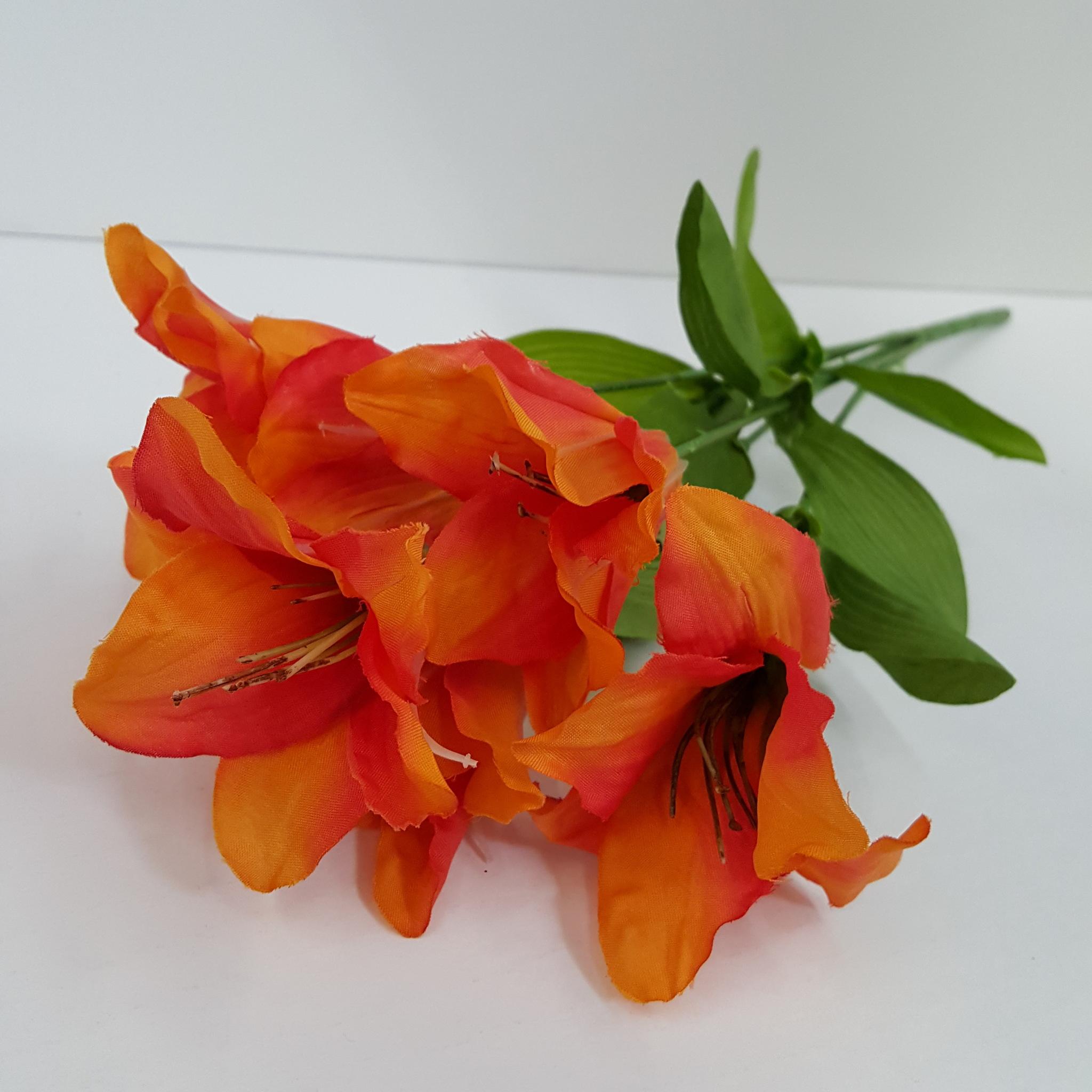 Orange Lily Bush, 1 Each