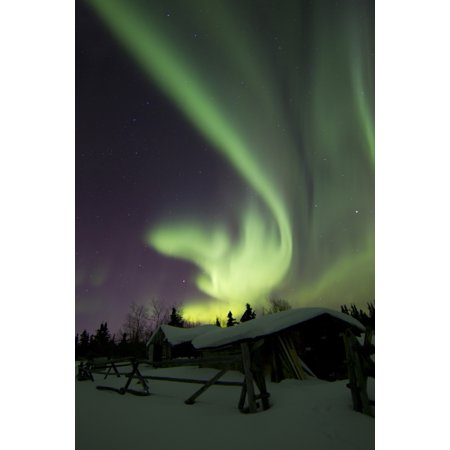 Aurora Borealis And The Big Dipper Light Up The Sky Above A Log Cabin At Whitehorse Yukon Canada Poster Print