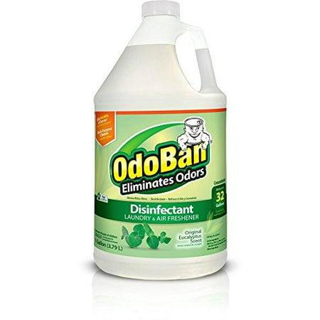 OdoBan Multipurpose Cleaner Concentrate, 1 Gal, Original Eucalyptus Scent - Odor Eliminator, Disinfectant, Flood Fire Water Damage Restoration Gallon 3.79 Litre (1 Count)